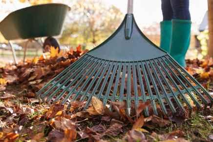 Burpham Gardening ClubNews